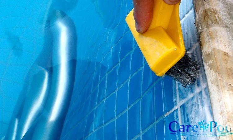 8 Passos para limpar piscina muito suja